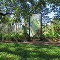 写真:ジョージ ブラウン ダーウィン ボタニック ガーデン
