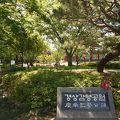 写真:慶尚監営公園