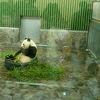 久しぶりに孫と動物園