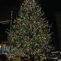 写真:ロックフェラーセンタークリスマスツリー