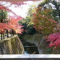 写真:仙巌園(磯庭園) 水道橋