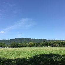 四條畷市/深北緑地公園