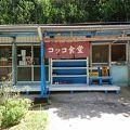 写真:コッコ食堂 美ら海店