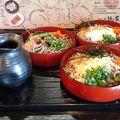 写真:出雲の國 麺家