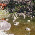 写真:小石川後楽園 大堰川