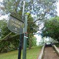 写真:アルバート公園
