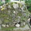 写真:さざれ石 (天岩戸神社)