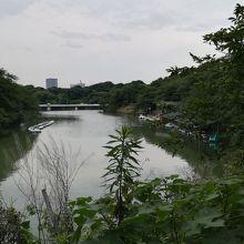 江戸城内堀で舟遊び