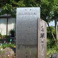 写真:尾崎翠生誕の地