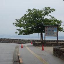 宮島桟橋からの眺め