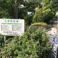 写真:北野町広場