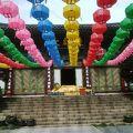 写真:大覚寺