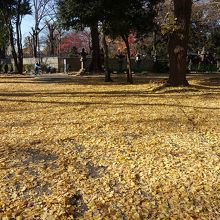 12月の風景(東照宮付近)