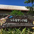 写真:しらほサンゴ村