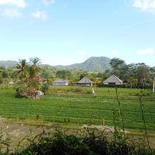 バリ島の原風景に出会える優しい人々の村
