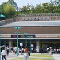 写真:大阪市中央体育館