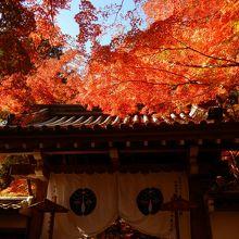 長岡京の光明寺