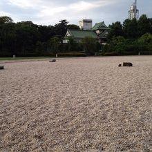 白い砂利石や青々とした芝生がきれい