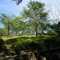 写真:中村城跡
