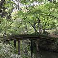 写真:六義園 山陰橋