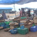 写真:ネゴンボ 魚市場