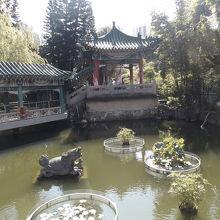 割と大きな庭園