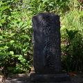 写真:飯沼貞雄の墓