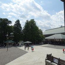 本堂から見た、本堂前の広場
