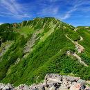 仙丈ヶ岳(仙丈岳)