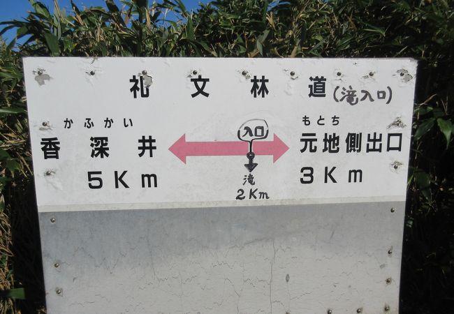 礼文林道コース