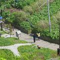 写真:階段国道