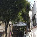 鬼子母神大門のケヤキ並木