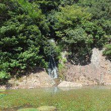 桶樋滝が手前の池(西湖?)に流れ込んでいました。