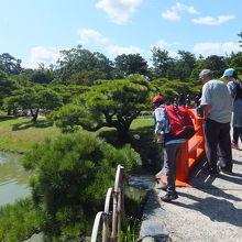 北湖の北側にある赤い梅林橋は鯉のエサやり場になっています。