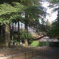 延暦寺 根本中堂
