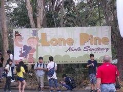ローンパインコアラパーク