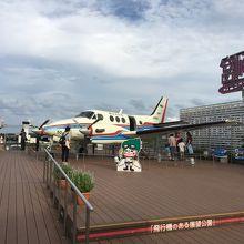 航空大学で使われた実際の飛行機の機体が置かれている