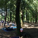 都立野川公園