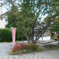 写真:河口湖七福神巡り