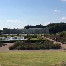 素晴しい植物園です