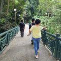 写真:キナバル自然公園