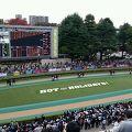 写真:東京競馬場