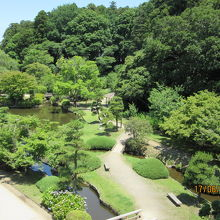 庭園の池と林