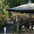 写真:深大寺 釈迦堂
