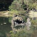 写真:六義園 蓬莱島