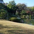 写真:六義園 玉藻の磯