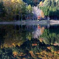 森に抱かれし湖は、かくも麗しき秋を映して