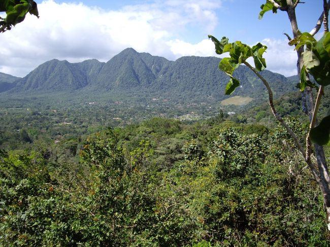 パナマの国土はカリブ海と太平洋に挟まれる横長い国なのであるが、それにも関わらず中央は山脈になっているので、意外に動きづらい。<br />このエル・バジェもガイドブックを見ると海岸からちょっと内陸に入っただけで、気軽に行けると思い2人で行ってみたが、かなりの山あいにあることがわかりびっくり。<br />いわゆる深い森の中にある村です。しかも、非常に涼しく当時の格好では寒いくらい。というか写真を見てもらえばわかるが、明らかにここへ来る格好ではない服装をしてしまっております。<br /><br />黄金のカエルとサークルトゥリー(四角形の木)が有名。