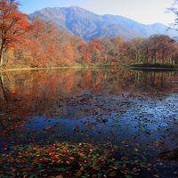 紅葉をもとめて 秋色に染まる福井の旅