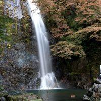 【大阪紅葉2009】 山を歩きながら、秋の自然を感じる 「箕面公園」  工事中